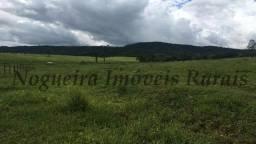 Título do anúncio: Fazenda na região de Avaré, 285 alqueires (Nogueira Imóveis Rurais)