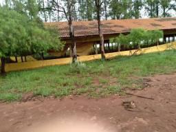 Barracão para granja ou confinamento