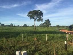 Fazenda Margem Rio Diamantino. Torixoréu-MT. 166 Alqueires
