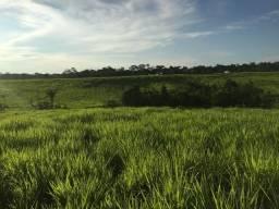 Fazenda de 1.470 hectares R$ 950 mil