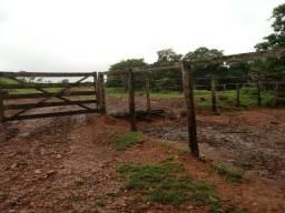 Fazenda 70 Alqueires região Cocalzinho Aceita 50% em imovel