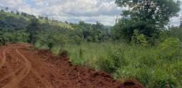 Terreno tipo Fazendinha 20.000m2 - financio - MVT