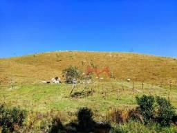 Fazenda à venda, 822800 m² (17 alqueires mineiros) por R$ 1.300.000 - Ipiabas - Rio Bonito