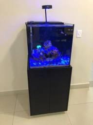 Vendo Aquario Marinho 125L Completo