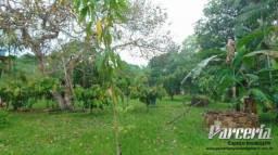 Sitio em Benevides com terreno frutífero, igarapé e 2 casas.