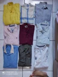 Camisas manga cumprida
