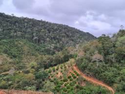 Título do anúncio: Sítio de 10 hectares em Soído de Cima, Domingos Martins