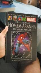 Homem aranha de volta ao lar salvat