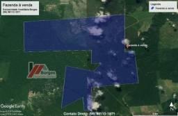 Fazenda de 610 Alqueires no Pará à R$ 28.000,00/HA