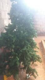 Uma enorme árvore de Natal
