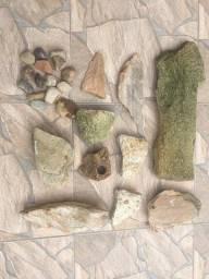 Título do anúncio: Troncos, Cascalho de Rio e Pedras Ornamentais - Decoração de Aquário