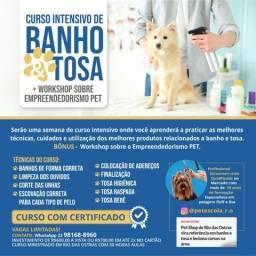 Título do anúncio: Leia com Atenção! Curso intensivão de banho e tosa com certificado em R. Ostras!