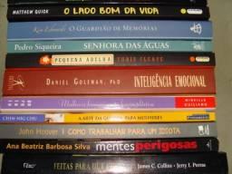 Lote com 63 Livros: Administração, Empresarial, Espiritismo, Romances, Ficção, Auto-Ajuda