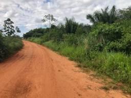 35 Hectares em Tangará da Serra- MT, aceito permuta casa e carro Tangará da Serra -MT