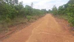 Fazenda 183 Alqueires, 3.5 km so asfalto, 70% plana
