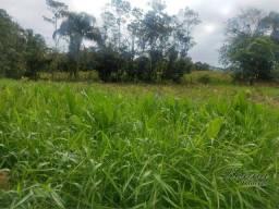 Título do anúncio: Terreno à venda, 525 m² por R$ 35.000 - Proximo do Rio Marumbi - Morretes/PR