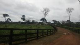 Fazenda Chalé 2.439 Hectares (430 hectares pastagens)