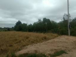 Terreno com 1km² - Campo Largo da Roseira - São José dos Pinhais