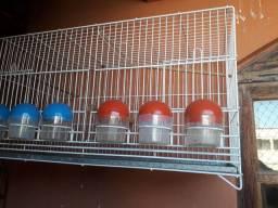 Vende se gaiola chocadera de canaro belga