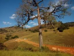 Título do anúncio: Excelente Chácara de 2.500m², no Bairro do Biguá, Delfim Moreira/MG