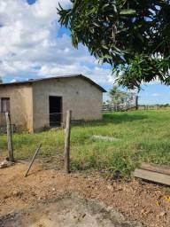 Oportunidade de adquirir sua fazenda com pequena entrada