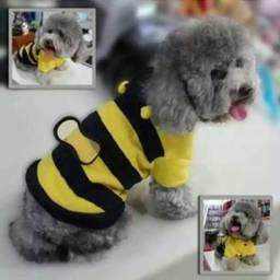 Roupa de abelhinha (Importada)