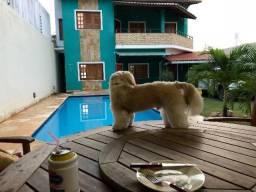 Linda Casa em Paracuru para final de semana