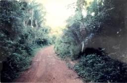 Aldeias Altas - Maranhão: VENDO Propriedade Rural