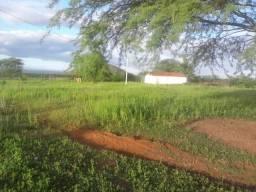 Fazenda com 630 hectares em santana do mato