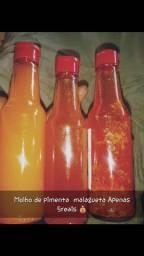 Vendo molho de pimenta malagueta