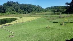Confinamento Fazenda a 80 km de Cuiabá