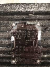Motor elétrico 380v 220v WEG