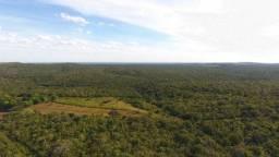 Título do anúncio: Fazenda 813 há (168 alqueires) no Vale do Araguaia
