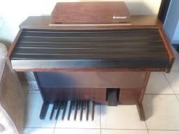 Órgão miname mx55r