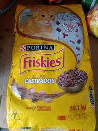 Friskes gato castrado