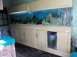 aquario de 3 metros