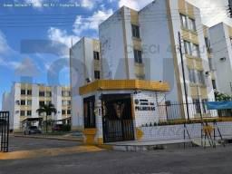 Título do anúncio: Conheça o Jardim das Palmeiras // Com Parque infantil