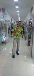 Locutor Felipe