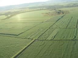 180 a 500 alqueires da melhor terra da região, sudoeste goiano