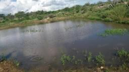 Vendo 15 hectares br 230/soledade