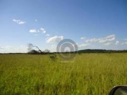 Fazenda 1.030,00 ha região canarana mt