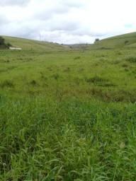 Oportunidade linda fazenda com 2700 hectares beira de pista