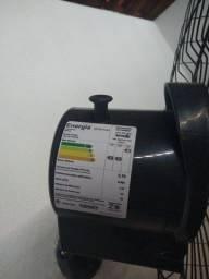 Ventilador (pouco tempo de uso)