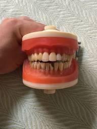 Manequim odontológico usado