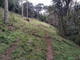 Terreno 73,5 hectares
