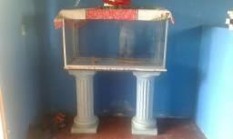 Aquario 250 litros com bomba na caixa