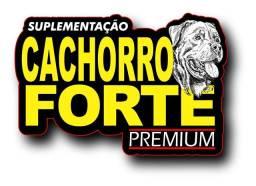 Cachorro Forte Bacabal-Ma