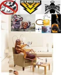 Dedetizador Ratos Camundongos e Ratazanas, Baratas baratinhas Formigas, etc