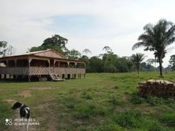 Fazenda no Acre com 450 hectares