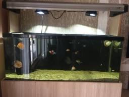 Torro aquário completo